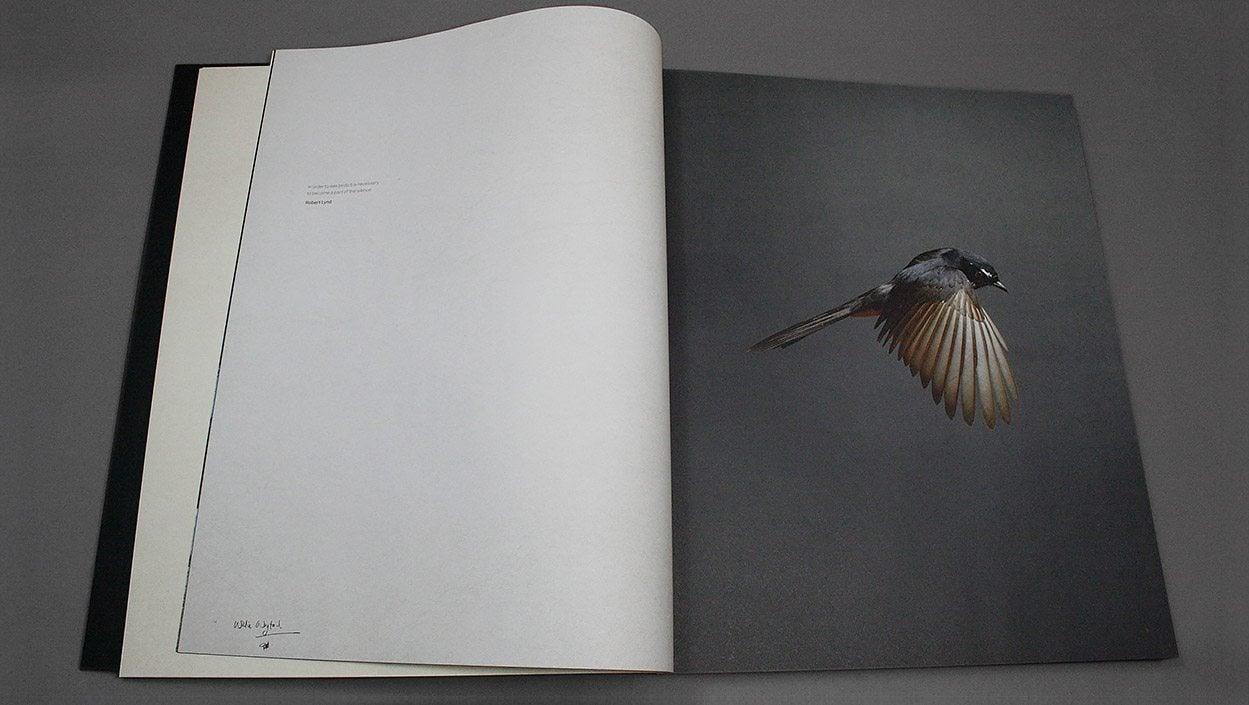 Gary Heery – Bird